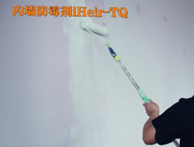 涂料防霉剂 用于水性涂料添加具有防霉功效?