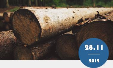 木材防霉怎样做才是最为实惠、持久